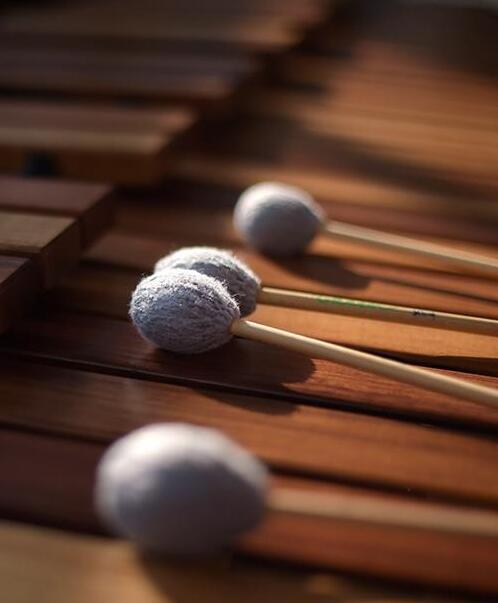 乒乒乓乓敲好玩——世界地球日主题音乐会